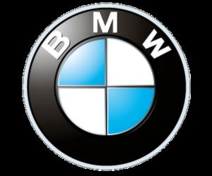 BMW Smart Glasses